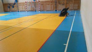 Czyszczenie nawierzchni sportowych, mycie sal gimnastycznych
