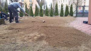 prace ogrodowe, usługi ogrodnicze