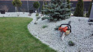 usługi ogrodnicze, wycinka drzew
