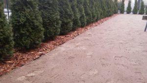 sprzątanie ogrodów,Tomaszów Mazowiecki