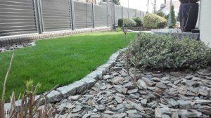 strzyżenie krzewów,usługi ogrodnicze