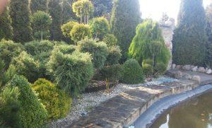 Sprzątanie ogrodów, Bełchatów